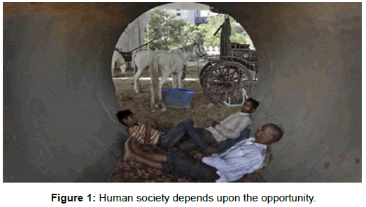 sociology-criminology-human-society-opportunity