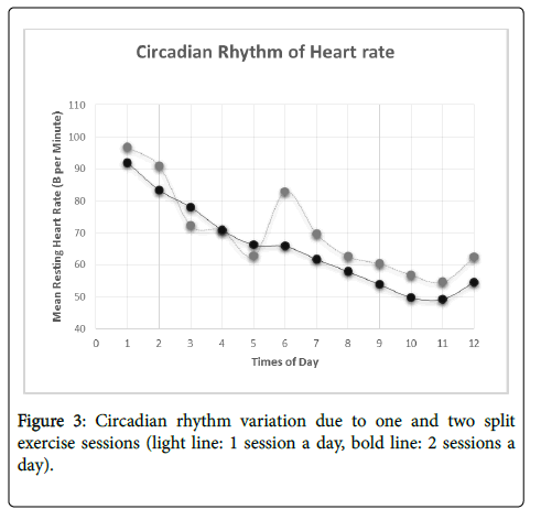 effects of aerobic exercise on heart rate essay Free essay: the effect of exercise on heart rate word count the effect of exercise on heart rate abstract - aims - this study is to ascertain, if there is an.
