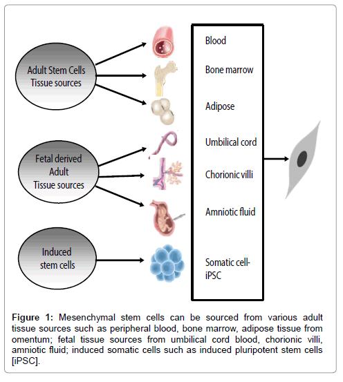 Stem diseases cells cure adult