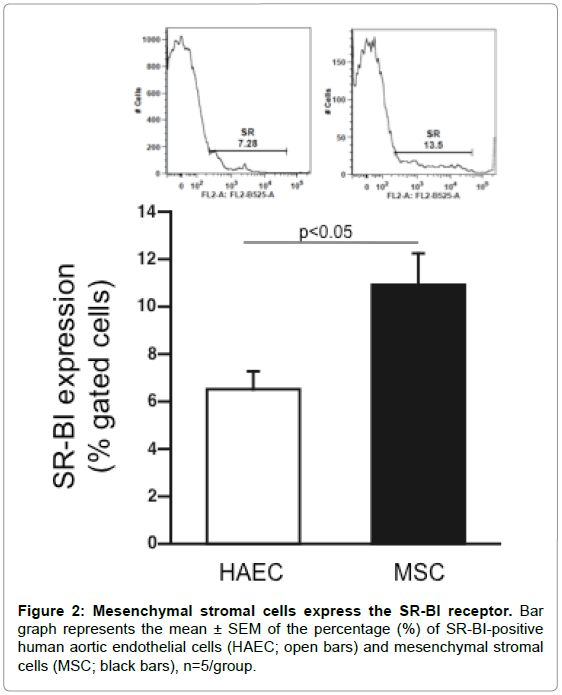 stem-cell-research-therapy-Mesenchymal-stromal