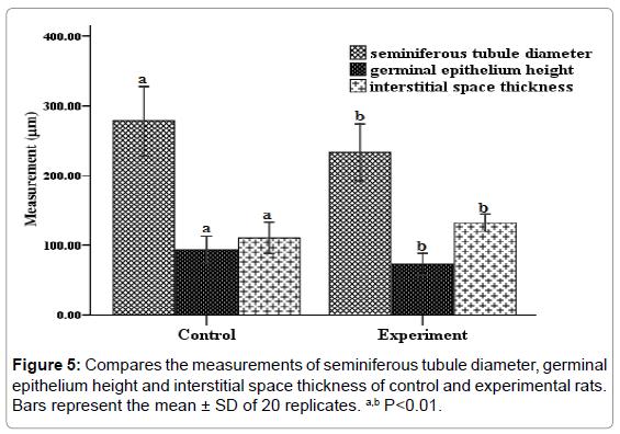 steroids-hormonal-science-seminiferous-tubule-diameter