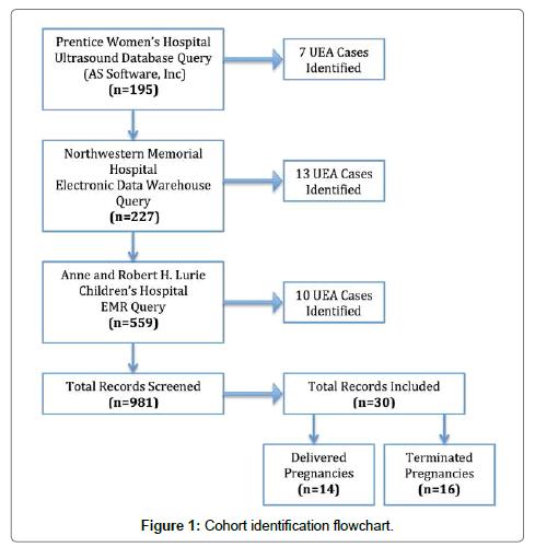 surgery-current-research-flowchart