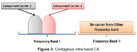 telecommunications-system-management-contagious-intra-band
