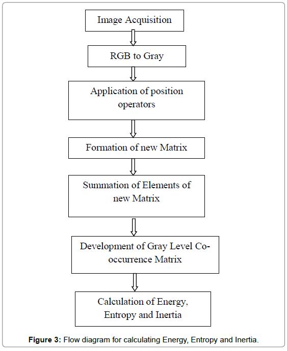textile-science-engineering-Flow-diagram-calculating-Energy
