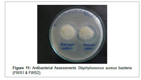 textile-science-engineering-antibacterial
