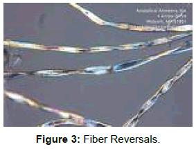 textile-science-engineering-fiber-reversals