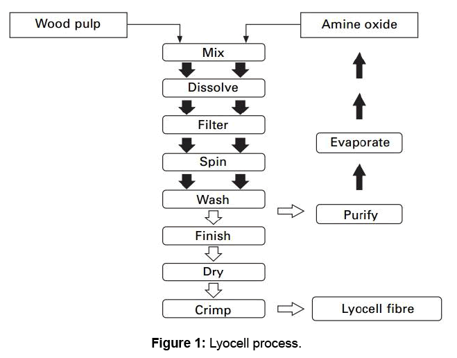 textile-science-engineering-lyocell-process