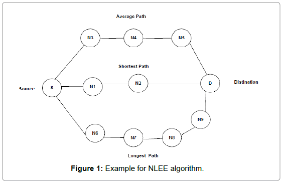 theoretical-computational-science-Example-NLEE-algorithm