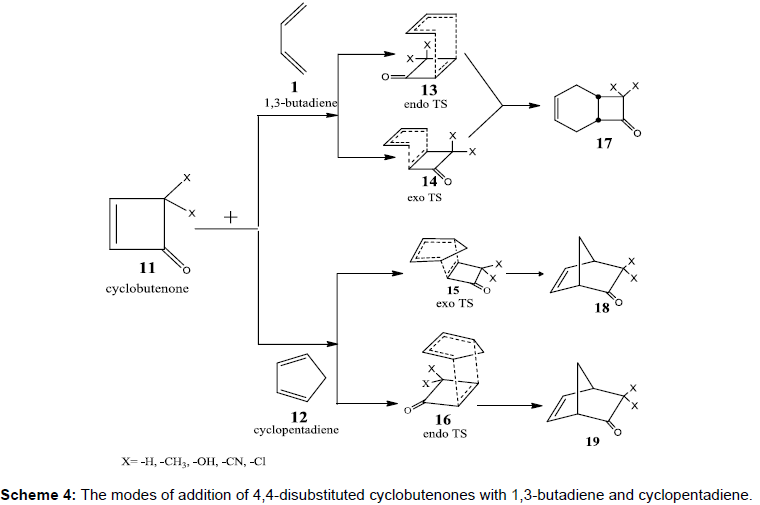 theoretical-computational-science-addition-disubstituted-cyclobutenones