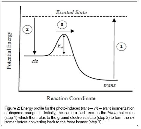 thermodynamics-catalysis-Energy-profile