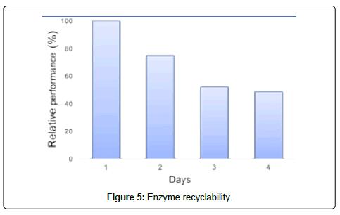 thermodynamics-catalysis-Enzyme-recyclability