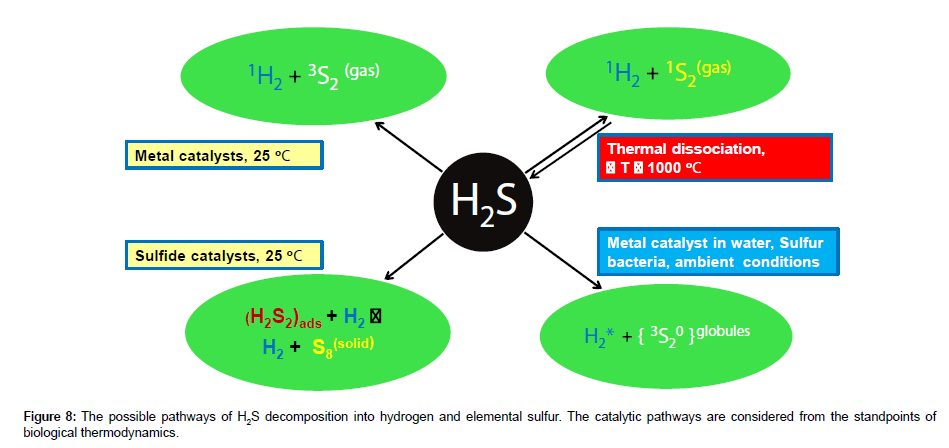 The Reaction Mechanisms of H2S Decomposition into Hydrogen and