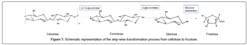 thermodynamics-catalysis-step-wise-transformation
