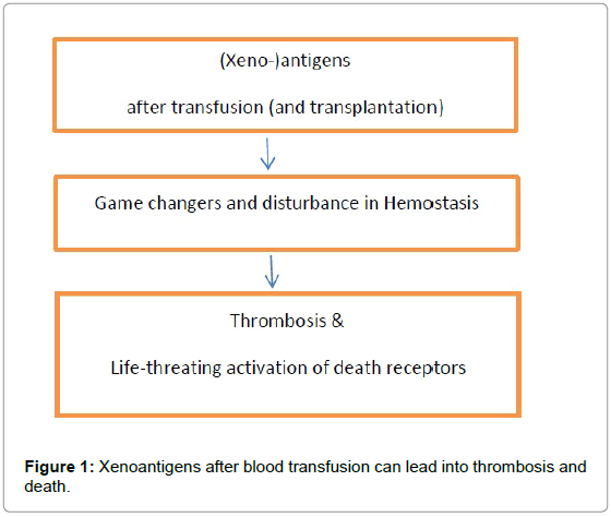 thrombosis-circulation-xenoantigens
