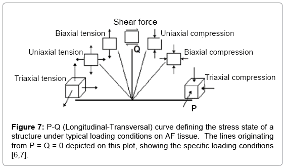 tissue-science-engineering-AF-tissue