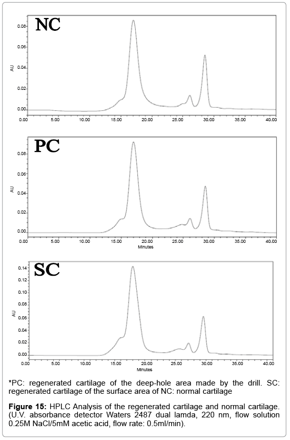 tissue-science-engineering-HPLC-Analysis