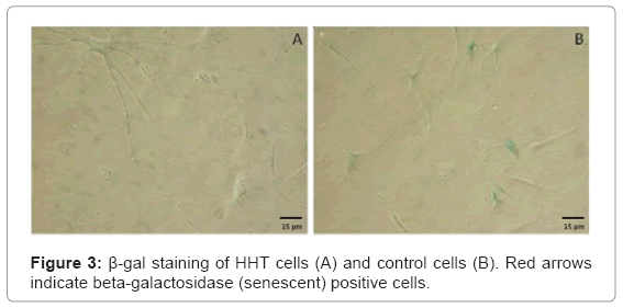 tissue-science-engineering-control-cells