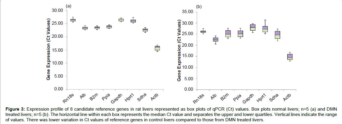 tissue-science-engineering-lower-variation