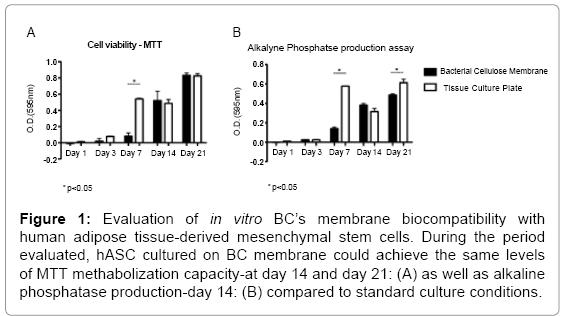 tissue-science-engineering-membrane-biocompatibility