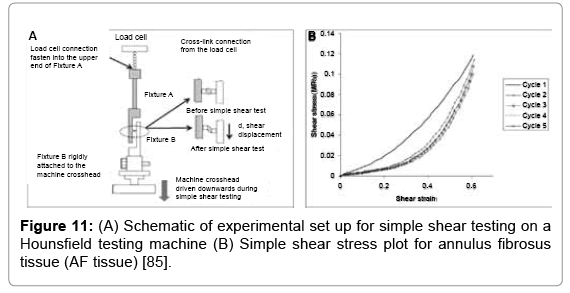 tissue-science-engineering-shear-testing