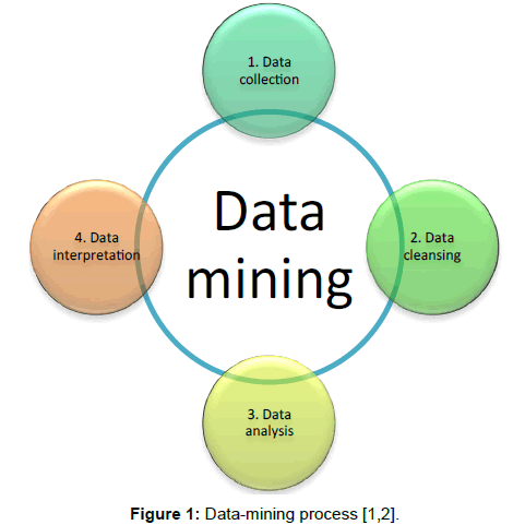 A Sample Big Data Mining & Analytics Business Plan Template