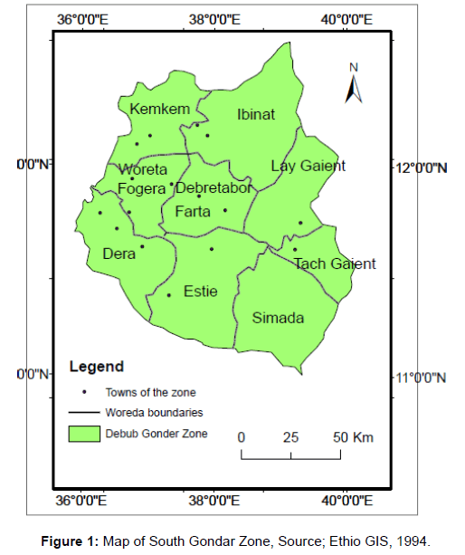 An Investigation Of The Potential Attributes For Tourist - Gondar map