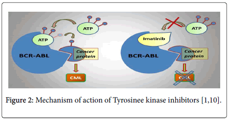 toxicology tyrosinee kinase