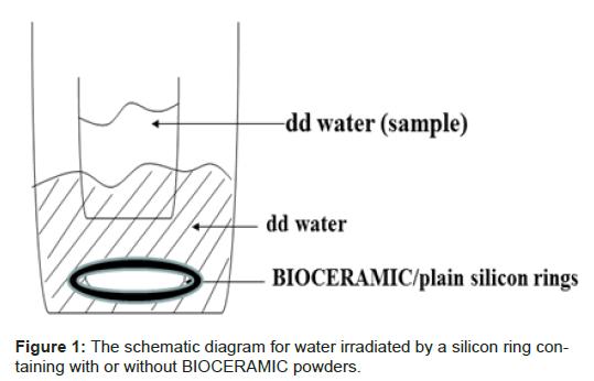 translational-medicine-irradiated-silicon-ring