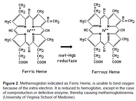 translational-medicine-methemoglobin-bind-hemoglobin