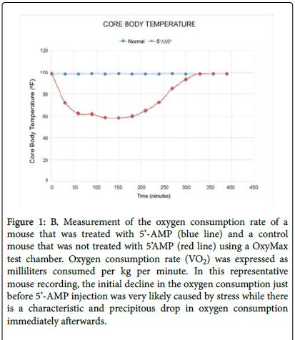 transplantation-technologies-body-temperature