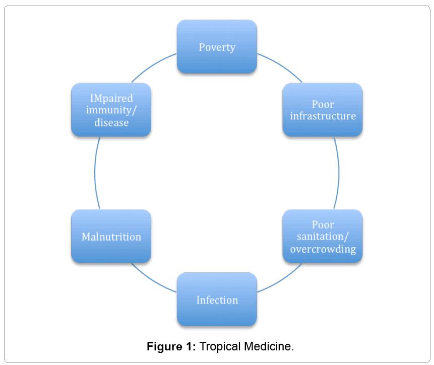 tropical-diseases-community-Tropical-Medicine