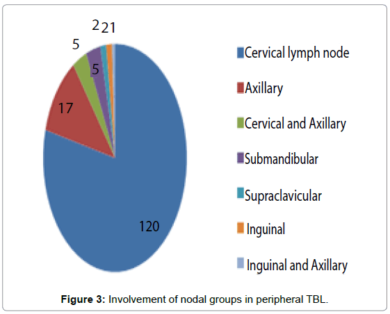 tuberculosis-therapeutics-involvement-nodal-groups