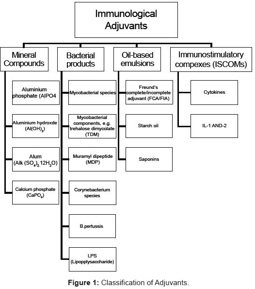 vaccines-vaccination-Classification-Adjuvants