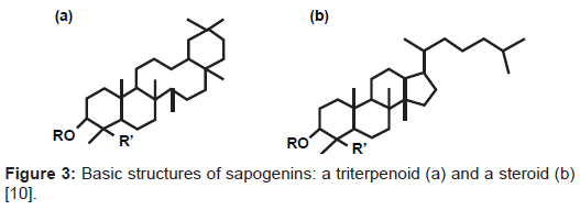 vaccines-vaccination-structures-sapogenins