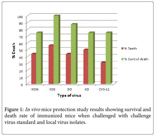 vaccines-vaccination-virus-isolates
