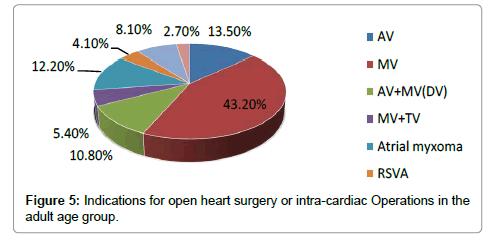vascular-medicine-surgery-heart