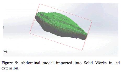 veterinary-science-technology-Abdominal-model