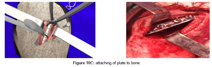 veterinary-science-technology-attaching-plate