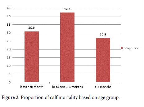 veterinary-science-technology-calf-mortality