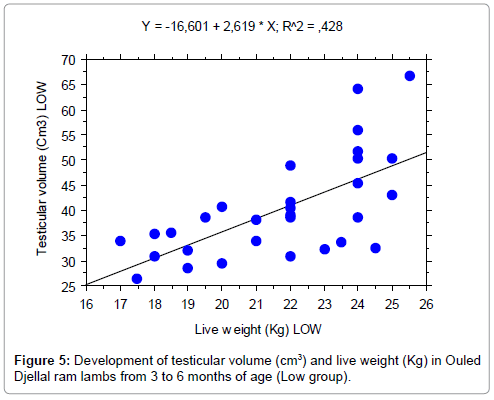 veterinary-science-technology-testicular-volume-low-group