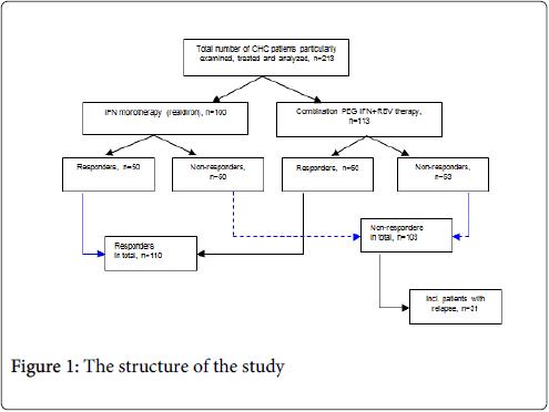 virology-mycology-structure-study