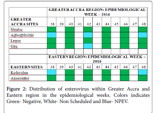 virology-research-Distribution-enterovirus
