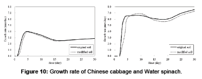 waste-resources-Chinese-cabbage