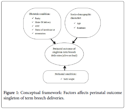 Prevalence and perinatal outcome of singleton term breech delivery womens health care conceptual framework ccuart Choice Image