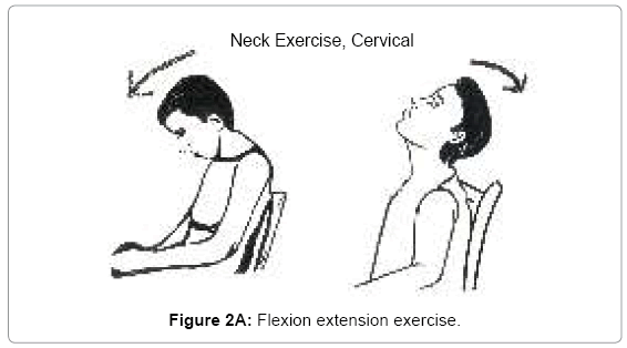 yoga-physical-therapy-Flexion-extension