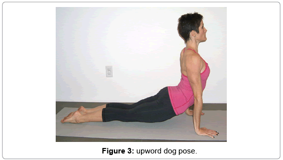 yoga-physical-therapy-upword-dog-pose