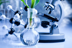 Bioengineering Biotechnology