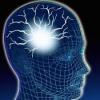 Brain Epilepsy