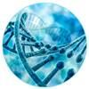 Cancer Pharmacogenomics