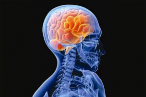 CNS and Neurological Disorders
